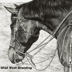 Wild West Braiding